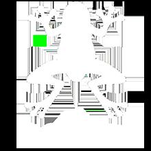 The Odd Frog Logo